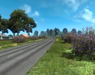 Летняя окружающая среда