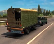 Пак бразильского трафика